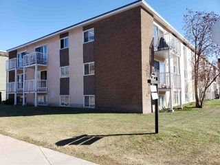 Photo 13: 204 9116 106 Avenue in Edmonton: Zone 13 Condo for sale : MLS®# E4179104