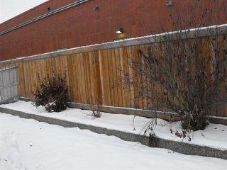 Photo 29: 4328 21 Avenue in Edmonton: Zone 29 House for sale : MLS®# E4183290