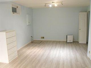 Photo 24: 4328 21 Avenue in Edmonton: Zone 29 House for sale : MLS®# E4183290