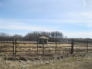 Photo 25: 1210 TWP RD 522: Rural Parkland County House for sale : MLS®# E4186200