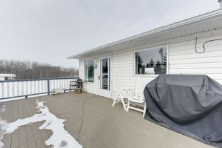 Photo 39: 70 Zodiac Drive: Rural Sturgeon County House for sale : MLS®# E4191981