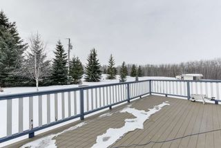 Photo 38: 70 Zodiac Drive: Rural Sturgeon County House for sale : MLS®# E4191981