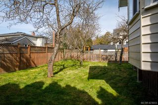 Photo 16: 518 Lampson Street in VICTORIA: Es Saxe Point Single Family Detached for sale (Esquimalt)  : MLS®# 423653