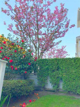 Photo 20: 109 5888 DOVER Crescent in Richmond: Riverdale RI Condo for sale : MLS®# R2456039