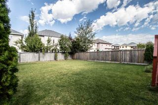Photo 33: 6716 19 Avenue in Edmonton: Zone 53 House for sale : MLS®# E4214526