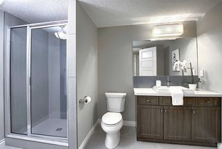 Photo 42: 4511 MEAD Court in Edmonton: Zone 14 House for sale : MLS®# E4219127