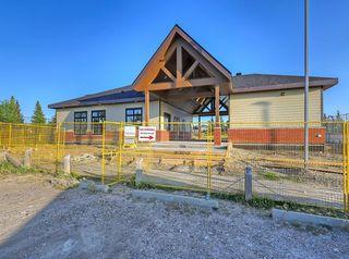 Photo 35: 741 Citadel Drive NW in Calgary: Citadel Detached for sale : MLS®# C4260865