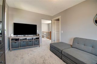 Photo 22: 18 KINGSLAND Way SE: Airdrie Detached for sale : MLS®# C4301794