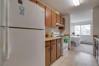 Photo 6: 4278 90 Glamis Drive SW in Calgary: Glamorgan Apartment for sale : MLS®# A1051418