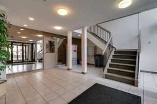 Photo 15: 4278 90 Glamis Drive SW in Calgary: Glamorgan Apartment for sale : MLS®# A1051418