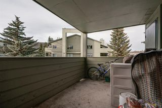 Photo 14: 4278 90 Glamis Drive SW in Calgary: Glamorgan Apartment for sale : MLS®# A1051418