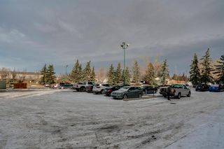 Photo 18: 4278 90 Glamis Drive SW in Calgary: Glamorgan Apartment for sale : MLS®# A1051418