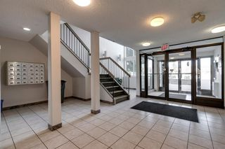 Photo 16: 4278 90 Glamis Drive SW in Calgary: Glamorgan Apartment for sale : MLS®# A1051418