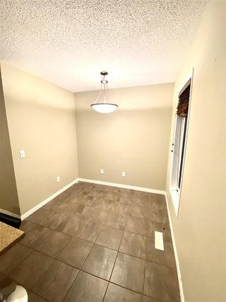 Photo 4: 116 1804 70 Street in Edmonton: Zone 53 Townhouse for sale : MLS®# E4192421