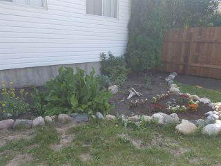 Photo 6: 13519 24 Street in Edmonton: Zone 35 House for sale : MLS®# E4195277