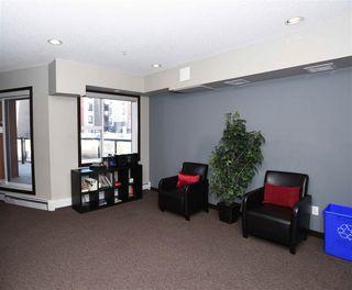 Photo 20: 208 304 AMBLESIDE Link in Edmonton: Zone 56 Condo for sale : MLS®# E4198169