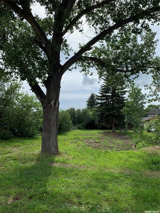 Photo 3: 218 Lewis Street in Pense: Lot/Land for sale : MLS®# SK815776