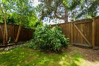 "Photo 34: 1 9320 128 Street in Surrey: Queen Mary Park Surrey Townhouse for sale in ""SURREY MEADOWS"" : MLS®# R2475340"