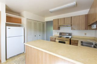 Photo 5: 164 3031 WILLIAMS ROAD in Richmond: Seafair Townhouse for sale : MLS®# R2502606