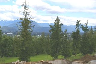 Photo 6: 214 51075 FALLS Court in Chilliwack: Eastern Hillsides House for sale : MLS®# H2702611