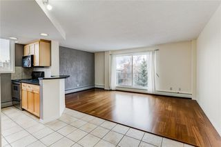 Photo 4: 401 340 4 Avenue NE in Calgary: Crescent Heights Apartment for sale : MLS®# C4290913