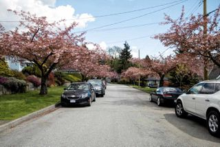Photo 13: 3737 PORTLAND Street in Burnaby: Suncrest House for sale (Burnaby South)  : MLS®# R2445846