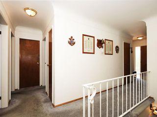 Photo 17: 3807 Merriman Dr in : SE Cedar Hill House for sale (Saanich East)  : MLS®# 854201
