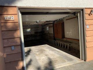 Photo 19: 3807 Merriman Dr in : SE Cedar Hill House for sale (Saanich East)  : MLS®# 854201