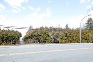 "Photo 9: 10749 RIVER Road in Delta: Nordel Land for sale in ""NORDEL"" (N. Delta)  : MLS®# R2407236"