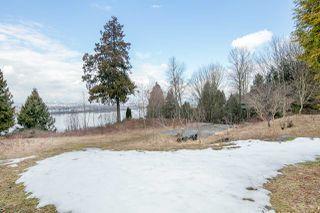 "Photo 8: 10749 RIVER Road in Delta: Nordel Land for sale in ""NORDEL"" (N. Delta)  : MLS®# R2407236"