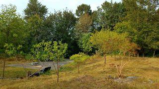 "Photo 14: 10749 RIVER Road in Delta: Nordel Land for sale in ""NORDEL"" (N. Delta)  : MLS®# R2407236"