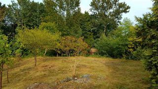 "Photo 12: 10749 RIVER Road in Delta: Nordel Land for sale in ""NORDEL"" (N. Delta)  : MLS®# R2407236"