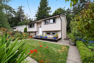 Main Photo: 245 Denman St in : CV Comox (Town of) Single Family Detached for sale (Comox Valley)  : MLS®# 851800