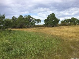 Photo 10: Wilkinson Land in Perdue: Lot/Land for sale : MLS®# SK824065