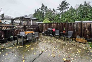 Photo 25: 6 11962 236 Street in Maple Ridge: Cottonwood MR House for sale : MLS®# R2518326