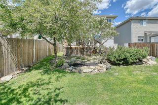 Photo 41: 49 SOMERSET Crescent SW in Calgary: Somerset Detached for sale : MLS®# C4300283