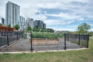 Photo 46: 315 510 6 Avenue SE in Calgary: Downtown East Village Apartment for sale : MLS®# A1012779