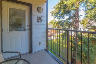 Photo 20: 307 520 Foster St in : Es Saxe Point Condo Apartment for sale (Esquimalt)  : MLS®# 854189