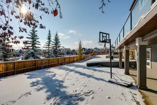 Photo 49: 108 Stonemere Point: Chestermere Detached for sale : MLS®# A1045824