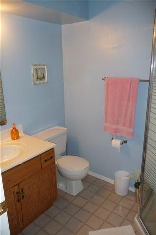 Photo 18: 464 Springfield RD in Winnipeg: North Kildonan Residential for sale (North East Winnipeg)  : MLS®# 1002953