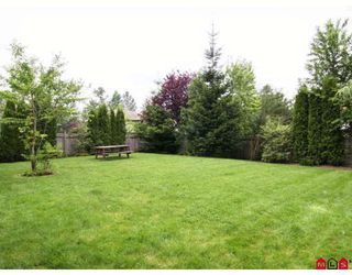 Photo 9: 26839 24TH Avenue in Langley: Aldergrove Langley House for sale : MLS®# F2816073