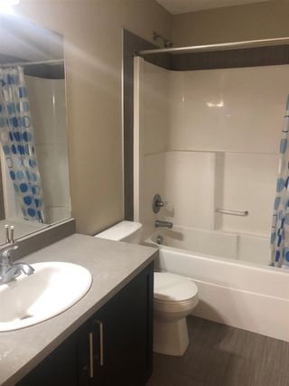 Photo 7: 8517 ELLIS Link in Edmonton: Zone 57 House for sale : MLS®# E4181531