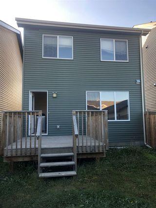 Photo 15: 8517 ELLIS Link in Edmonton: Zone 57 House for sale : MLS®# E4181531