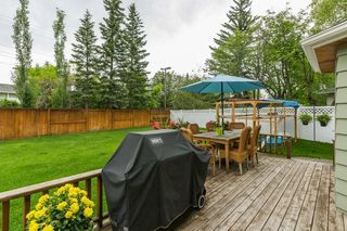 Photo 37: 10 LORNE Place SW in Calgary: North Glenmore Park Detached for sale : MLS®# C4281632