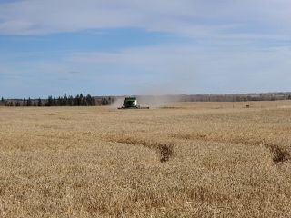 Photo 2: RR 13 TWP RD641: Rural Westlock County Rural Land/Vacant Lot for sale : MLS®# E4196286