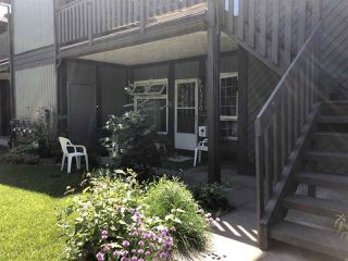 Main Photo: 5770 172 Street in Edmonton: Zone 20 Carriage for sale : MLS®# E4202713