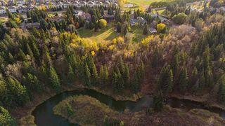 Photo 39: 10816 5 Avenue SW in Edmonton: Zone 55 House for sale : MLS®# E4218210