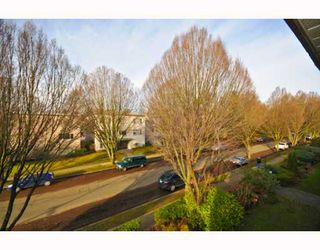 Photo 6: 304 8680 FREMLIN ST in Vancouver: Marpole Condo for sale (Vancouver West)  : MLS®# V803112