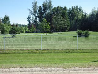 Photo 26: 1 421047 N Range Road 24 in Rural Ponoka County: NONE Residential for sale : MLS®# A1020292