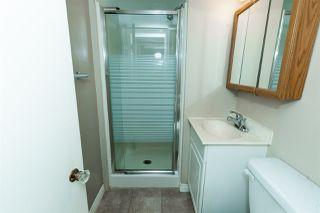 Photo 22: 11202 55 Street in Edmonton: Zone 09 House for sale : MLS®# E4176079